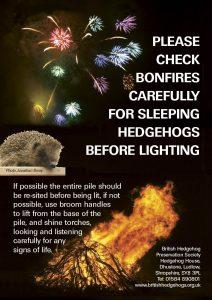please-check-bonfires
