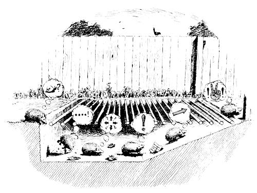 Ramps The British Hedgehog Preservation Society