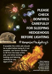 BHPS - Please Check Bonfires